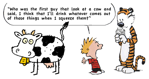 Image result for calvin and hobbes milk