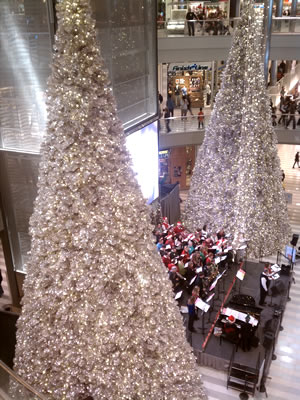 Christmas Trees at the Mall of America